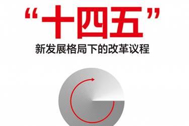 """读懂""""十四五"""" : 新发展格局下的改革议程 刘世锦"""