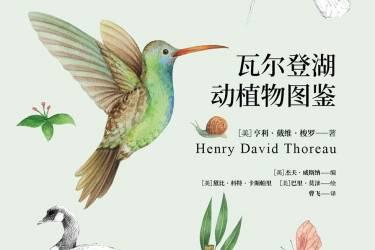 瓦尔登湖动植物图鉴:动物篇+植物篇(2册)亨利·戴维·梭罗