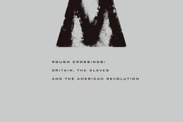 风雨横渡 : 英国、奴隶和美国革命 西蒙·沙玛