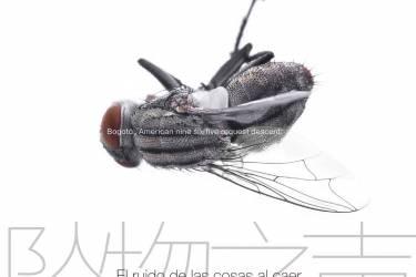 坠物之声 [哥伦比亚] 胡安·加夫列尔·巴斯克斯pdf-epub-mobi-txt-azw3