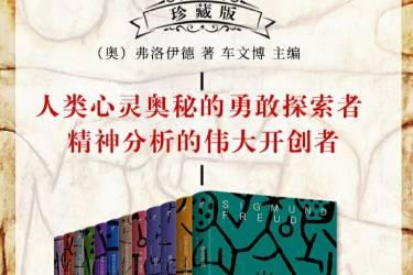 弗洛伊德文集(全十二册)珍藏版 pdf-epub-mobi-txt-azw3